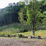 つばさの樹木葬