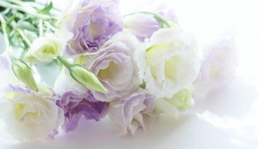 変化する葬儀とお墓への意識